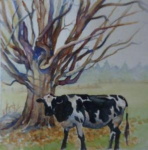 Cow Resting by Dancing Tree - (c) Kay Morris